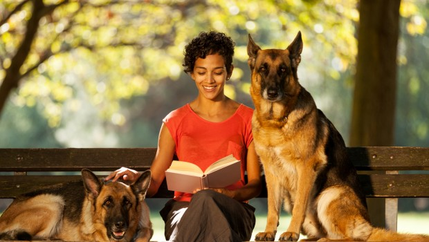 Woman is sitting on a bench with two german shepherds
